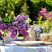 鲜花美女下午茶