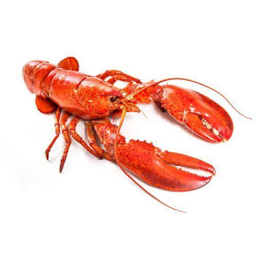 第一吃:法式黄油焗龙虾-【龙虾四吃LobsterFourWays】(上)