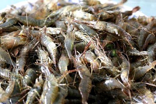三虾面又贵时令又短,【虾籽酱油拌饭】,有腔调更有滋味